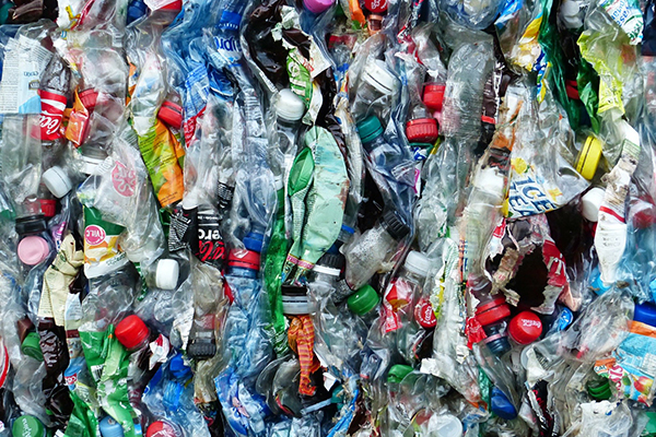 Waste Bottles